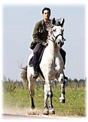 жду принца на белом коне